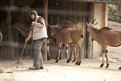 Machen Sie Ihre Liebe zu Tieren zum Beruf! © Tim Aßmann - Fotolia.com